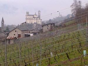Valtellina Dirupi wijngaard